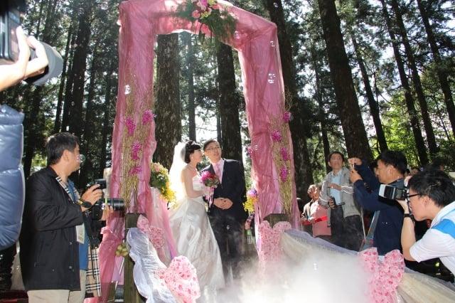 新人穿過精心布置的粉紅色喜氣緞帶拱門,緩步來到香林神木下,接受大自然和民眾的祝福。(記者李擷瓔/攝影)