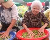 製梅達人授技巧  鼓勵民眾DIY賺健康|梅子 | 廚娘香Q秀 | 醃漬梅子