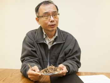 長庚大學賴信志教授表示,我們發現冬蟲夏草能有效抗發炎,也從實驗了解這些化合物的分子機制。