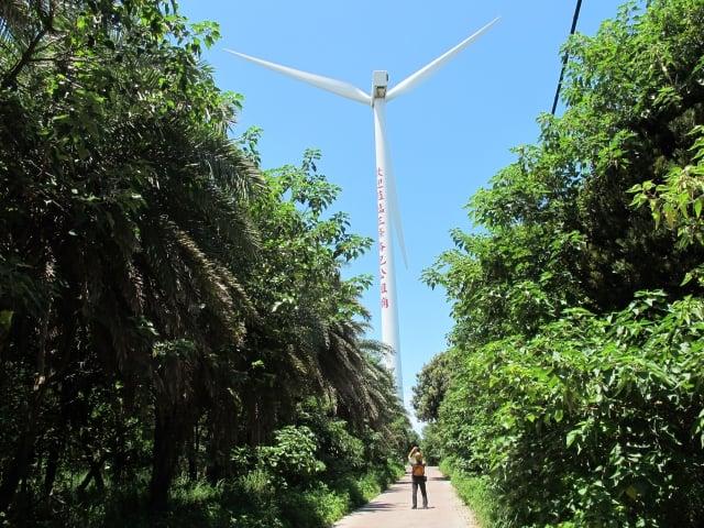 風力發電車,擎天而立,發出「呼呼」的風聲,成了濱海地區特有的景觀。(記者廖素貞/攝影)