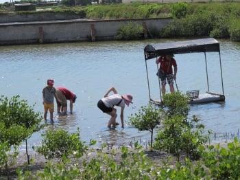 到馬蹄蛤可以體驗「摸蜆兼洗褲」的樂趣。(記者廖素貞/攝影)