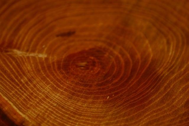 擁有沉穩深棕色柚木打造的實木家具,因木質紋路和顏色深淺變化萬千而各具特色。(詩肯柚木提供)