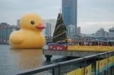 基隆黃色小鴨復活  回到清新萌樣|台中 | 黃色小鴨 | 海洋音樂季
