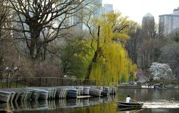 博物館旁有廣闊的中央公園為伴,為它妝點春暖、夏暑、秋涼、冬寒的四季容顏。(Getty Images)
