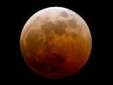 天文奇觀 「血月」今降臨|