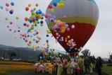 三星花海嘉年華 熱氣球登場|觀光局 | 熱氣球 | 高雄起飛