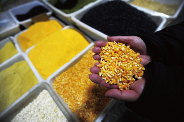 基因改造食品,對於人體健康與環境的破壞,具有潛在威脅。(AFP)