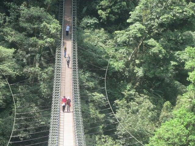 必需上下208個階梯才能走完整座天梯吊橋。(攝影/鄧玫玲)
