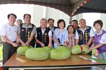 後龍西瓜頂瓜瓜 盛產期品種多樣