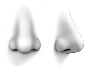挖鼻孔易導致腦膜炎,戒掉吧!