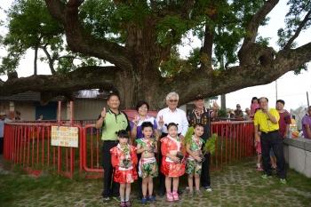 傳承老樹  雲林推動法制化保護老樹