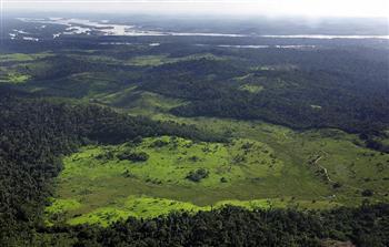 神秘亞馬遜雨林非原始林 極盛時曾有5千萬原住民