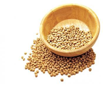 氣候變遷影響大宗物資 專家:反聖嬰讓黃豆玉米期貨漲