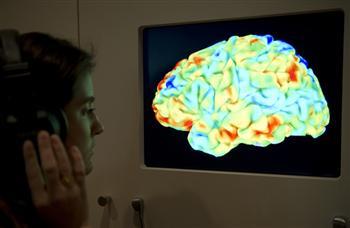 許多病例幾乎無腦卻智力正常 人腦的存在價值是什麼?