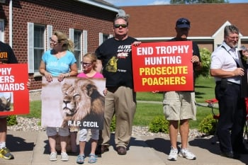 盜獵獅子王引眾怒 萬人連署引渡美牙醫