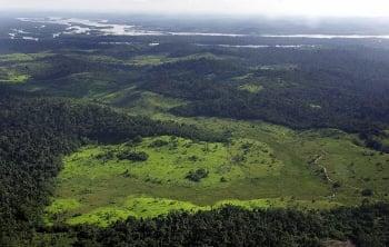 亞馬遜雨林是人造 曾有5千萬原民