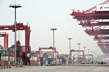 看壞中國外貿前景 北歐線運價週挫兩成