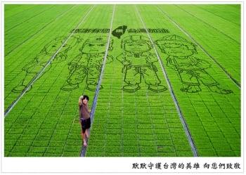「農業也可以做得很開朗」 青農小劍劍顛覆苦累印象
