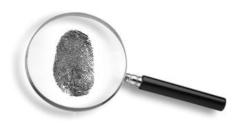 研究:看指紋能推測祖先資訊