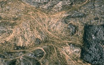 火山噴發後 岩漿遇空氣會「長出毛髮」