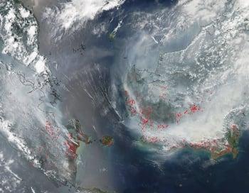 印尼雨季遲到 恐創史上最慘霾害