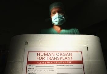 國際漠視中共活摘器官 學者:背叛人性