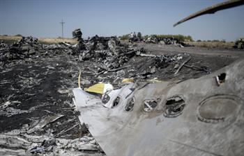 荷報告:MH17遭俄製飛彈擊毀
