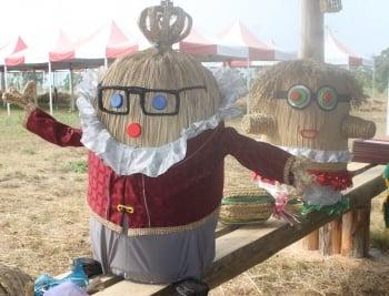 工藝稻草文化節  週末植物公園登場