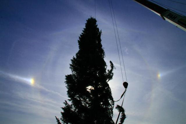 2006年11月27日美國華盛頓特區的國會大廈聖誕樹的兩邊出現幻日。(KAREN BLEIER/AFP/Getty Images)