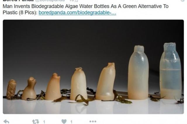 冰島藝術學院學生瓊森(Ari Jónsson)創造出一種可自然分解的水瓶,瓶中的水一旦用完,就會自然分解。(推特網頁擷圖)