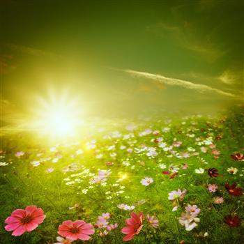 活在心靈陽光中的人