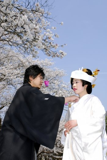 華人赴日結婚 救了日本婚慶市場