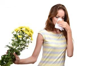 抗過敏的天然療法 一天6片紫蘇葉