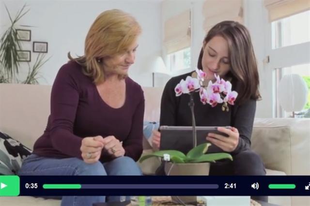 瑞士Vivent公司研發的PhytlSigns裝置,可將植物的電壓變化轉換成聲音,讓人們聽見它們「說話」。(視頻擷圖)