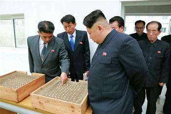 金正恩最畏懼之事被公開 北韓軍隊或內部瓦解