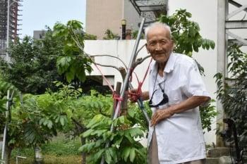 鑽研農產改良 百歲人瑞獲選模範父親