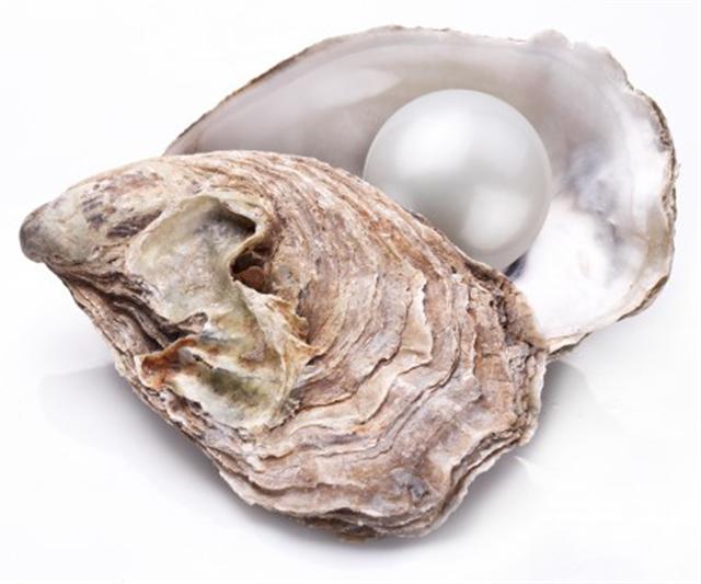 珍珠是一種由牡蠣生產的硬的、圓滑的產物。(Fotolia)
