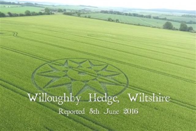 6月5日,威爾特郡Willoughby Hedge的麥田圈。(影片截圖)