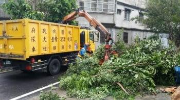 28日勞動節又是颱風假 桃市環保總動員清垃圾整理市容