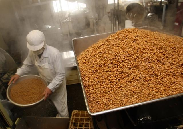 食藥署26日表示,目前國內進口的黃豆中,97%是基改、3%非基改。(Getty Images)
