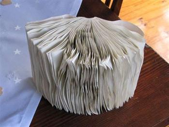 書本被雨淋得皺巴巴怎麼辦?其實只要放「這個」,就能輕鬆回復原本的狀態!