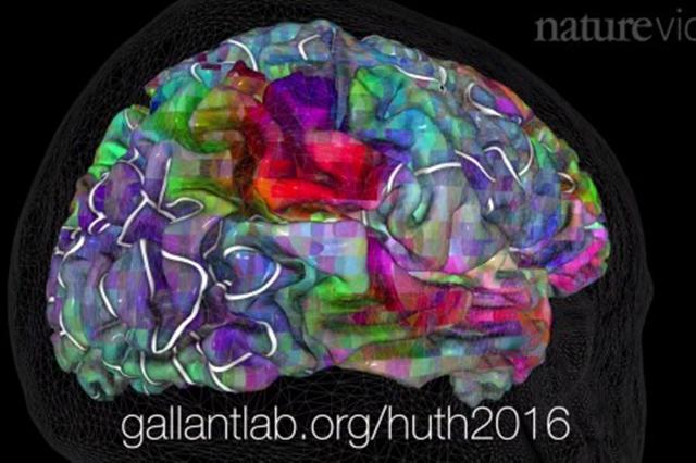 模式圖:人腦處理語言的功能區比迷宮複雜億萬倍。(《自然》視頻截圖)