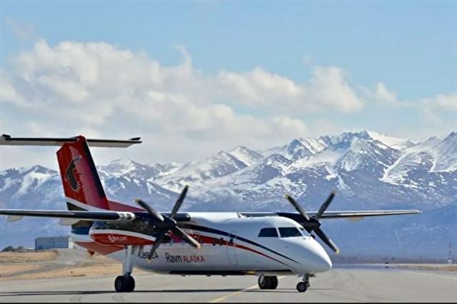 3月19日美國阿拉斯加州通勤航空公司Ravn Alaska的空姐徒手抓住乘客丟失在飛機上的蛇。(anchorage.net)