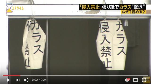 佐藤克文在研究設施貼上「禁止烏鴉入侵」的告示,果真使烏鴉止步。(影片擷圖)