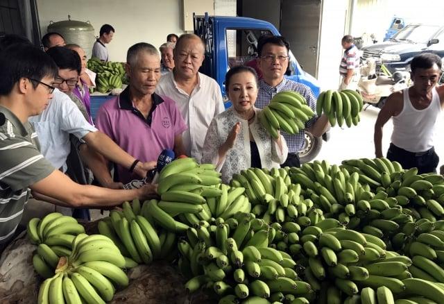 解決香蕉過剩  農委會:複製鳳梨酥經驗