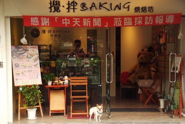 吉娃娃每天幫主人顧店,讓主人可以安心做蛋糕。牠為自己賺取狗糧。