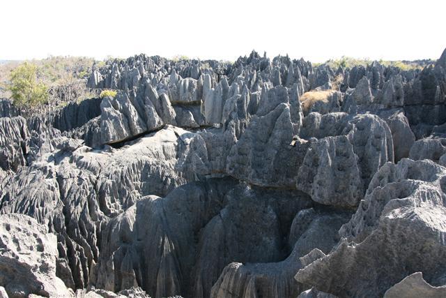 荊棘貝馬哈石林,被譽為「世界最大的天然迷宮」,主要由喀斯特地形和石灰岩丘陵組成,堪稱世界上最壯觀的岩石結構奇觀。(Marco Zanferrari/Flickr)