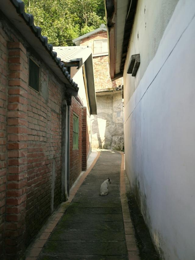 有別於喧嚷的桂花巷,位於上方的巷弄更顯幽靜。(攝影/咪豬)