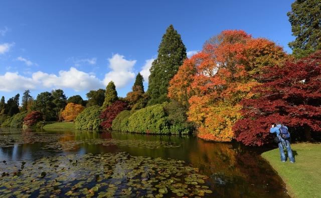 謝菲爾德公園秋色艷麗。 ( Getty Images、Fotolia )