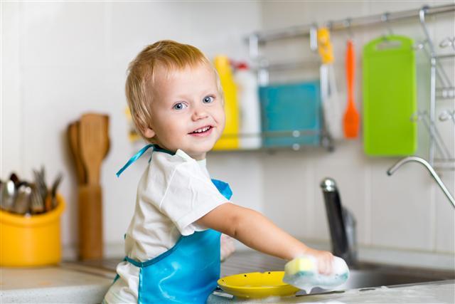 苦茶油粕萃取的油茶皂苷,具有良好起泡能力,成分天然又能避免經皮毒的威脅。(123RF)